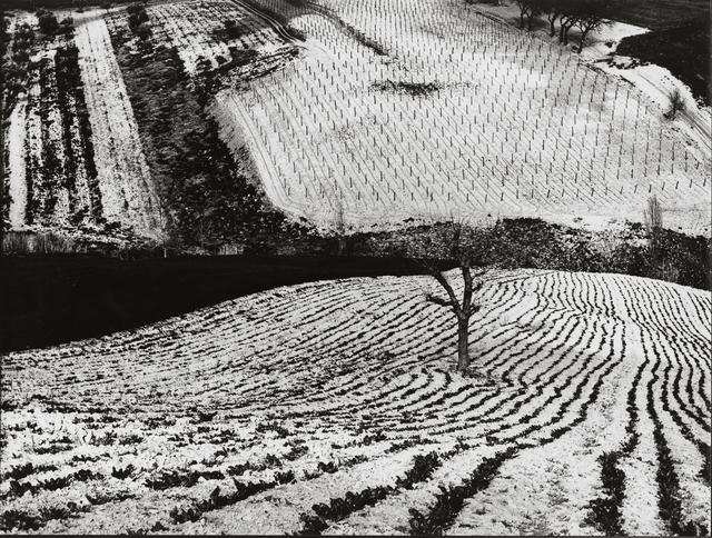 , 'Paesaggio,' 1968, Robert Klein Gallery