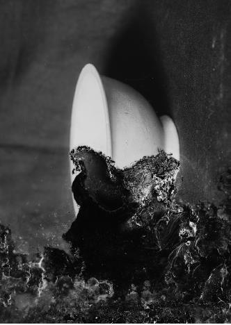 , 'Resonances & Reverberations ii,' 2015, Flowers