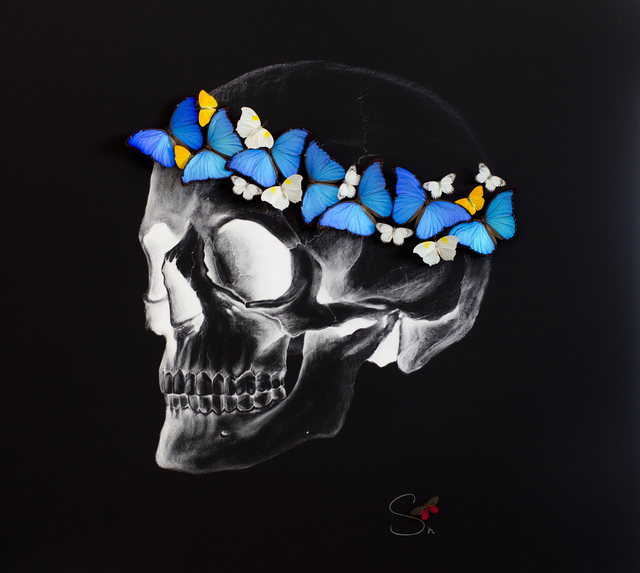 SN, 'Negative skull', 2017, Drawing, Collage or other Work on Paper, Charcoal and Pencil Drawing on Paper with Mounted Butterflies., Eden Fine Art
