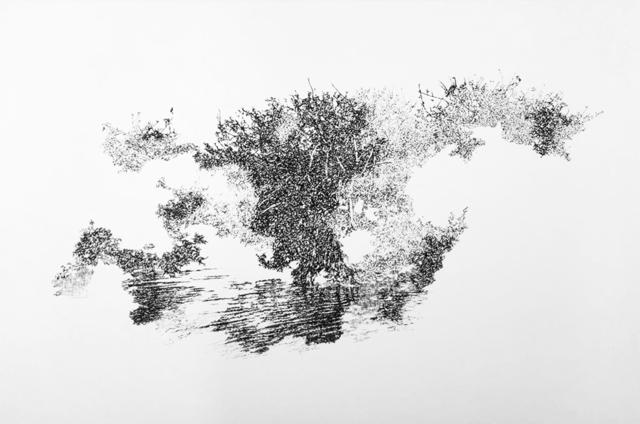 , 'Wrath of God (Everglades I),' 2017, Emerson Dorsch
