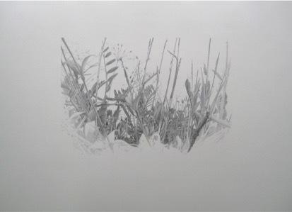 , 'Lieux de Mémoires, 34.000 Jahre Grasnarbe. Brandrede des Serbenführers Slobodan Milosevic, 1989, Amselfeld, Kosovo, Bosnien-Herzegowina,' 2010, Zilberman Gallery