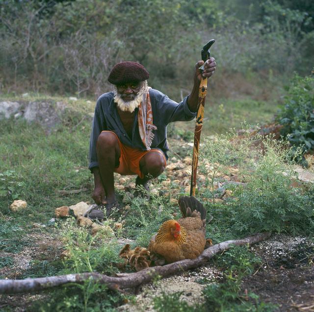 , 'Noble Man, Jamaica,' , Dab Art