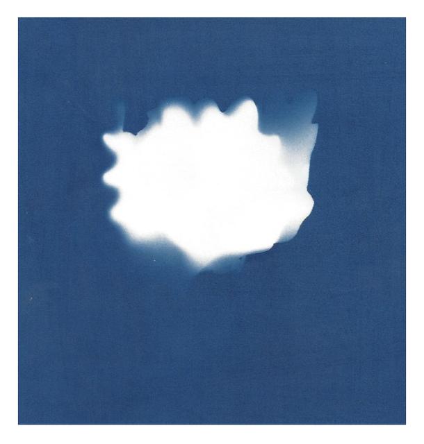Sarah Irvin, 'Cyanotype Archive: Toy Lettuce', 2019, Massey Klein Gallery