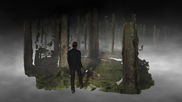 Persijn & Margit Broersen & Lukács, 'Forest On Location', 2018, Akinci
