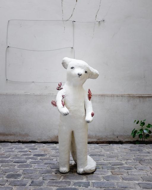, 'A fox in my garden,' 2018, Antonine Catzéflis
