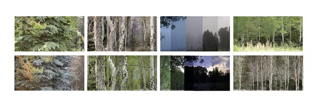 , 'Wyoming: 3 x 180, 36 Hour Film, ed. of 7,' 2014, Tayloe Piggott Gallery
