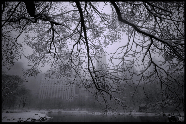 Michael Yamaoka, 'Snowstorm in Central Park', 2021, Photography, Digital Print on Aluminum, The Galleries at Salmagundi