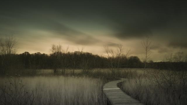 , 'Crosswinds Marsh Wetland Interpretive Preserve,' 2017, M Contemporary Art
