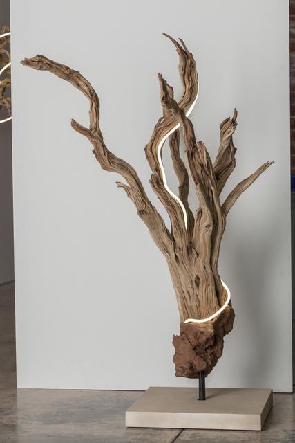 Lisa Schulte, 'Untitled Wood Series #2', 2014, Voltz Clarke