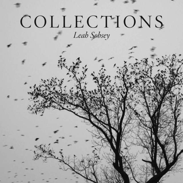 ", '""Collections"",' 2016, Daylight Books"
