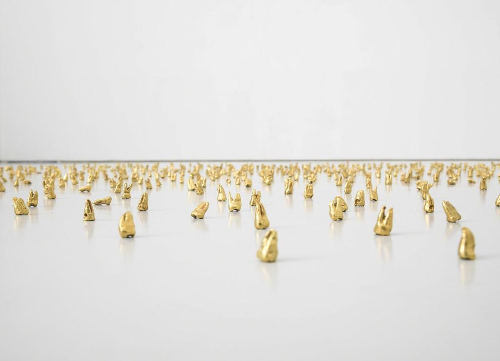 Wisdom Teeth (1,000 pieces)