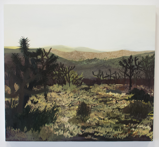 , 'Twenty-nine palms, CA,' 2016, Fort Worth Contemporary Arts