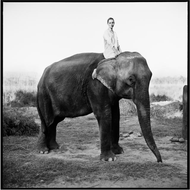 Arthur Elgort, 'Kate Moss on Elephant, British Vogue', 1993, Fahey/Klein Gallery