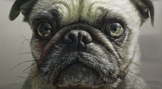 , 'Dog,' 2014, Galerie Bhak