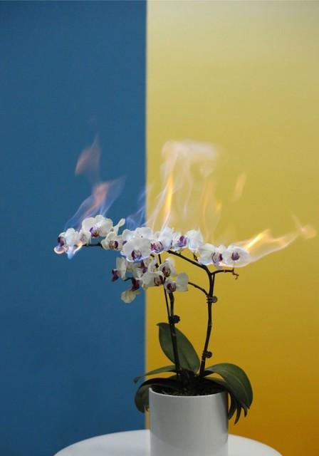 Jiang Zhi 蒋志, 'love letters No.16', 2011, Photography, Photograhy, Tang Contemporary Art