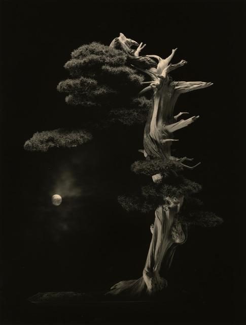 , '#4001,' , Mizuma Art Gallery