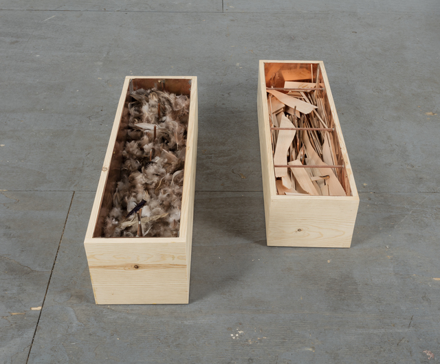 Robert Kinmont, 'Want and try ', 2015, Sculpture, Pine, copper, duck feathers, and balsa gliders in 2 parts, Alexander and Bonin