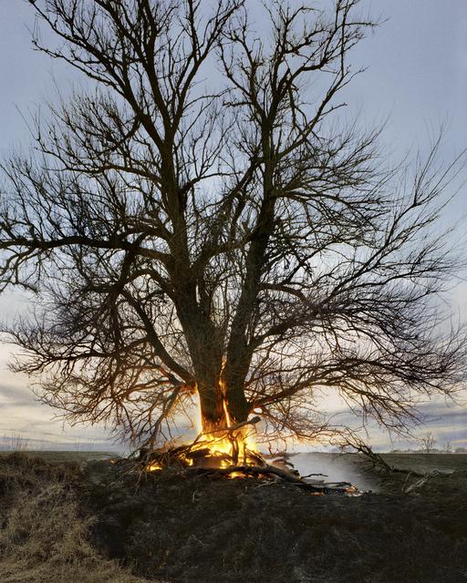 Christian Patterson, 'Tree on Fire', 2009, Robert Morat