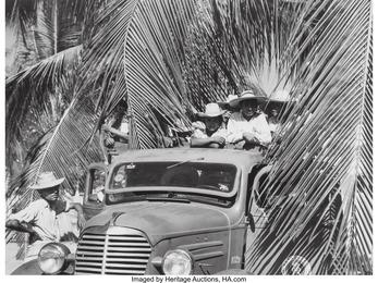Trabajadores del tropico (Workers of the Tropics)