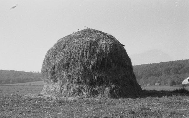 Pavel Ilie, 'Baragan Series', 1975-2017, Allegra Nomad Gallery