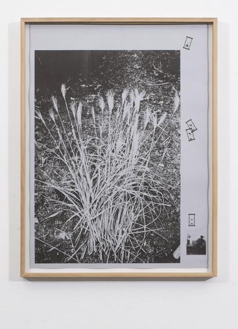 , 'Let It Think,' 2015, Galerie Nathalie Halgand