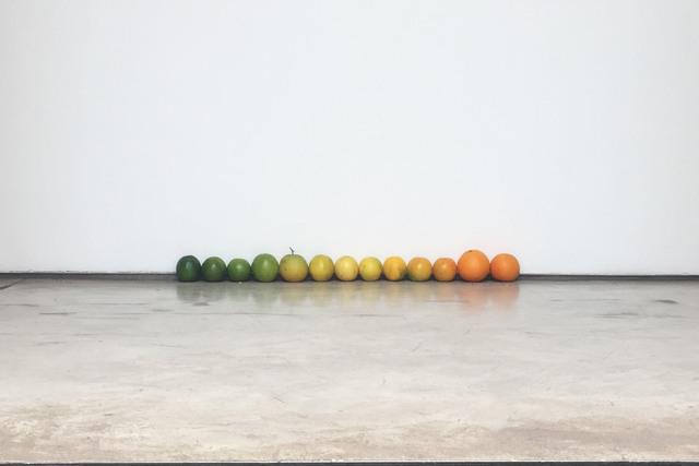 , 'Laranjas,' 2017, Galeria Raquel Arnaud
