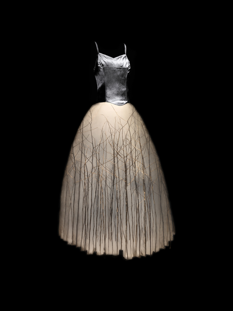 , 'Piney Woods,' 2016, Winston Wächter Fine Art