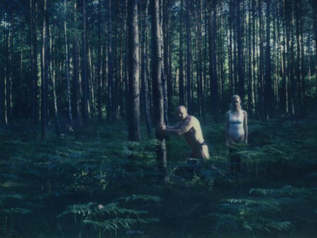 , 'Ferns,' 2016, Postmasters Gallery