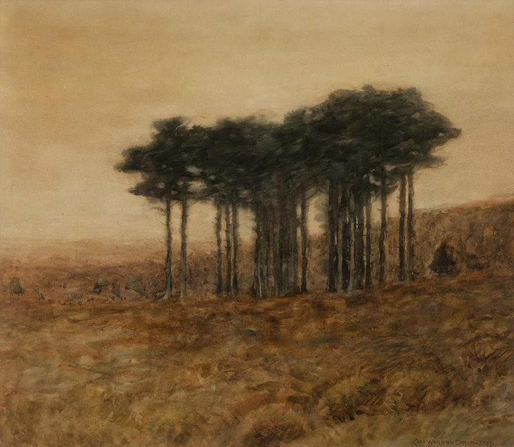 Gloaming Pines