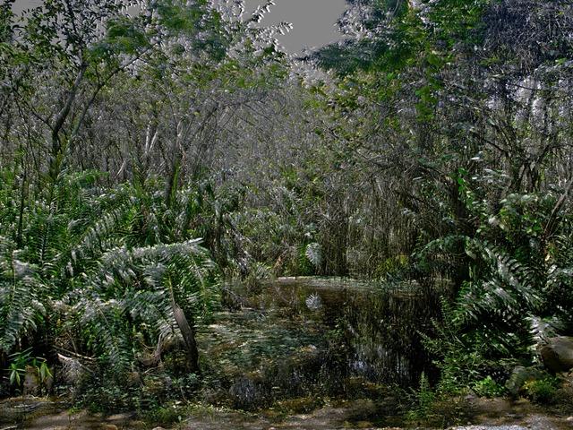 , 'Visible Calm I,' 2013, Miguel Marcos