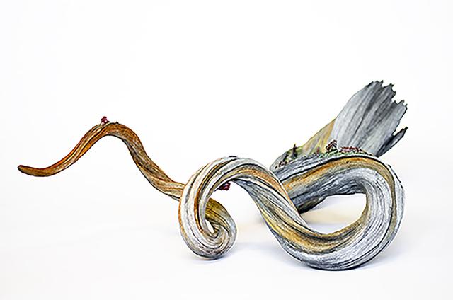 , 'Core Sample,' 2016, Abmeyer + Wood Fine Art