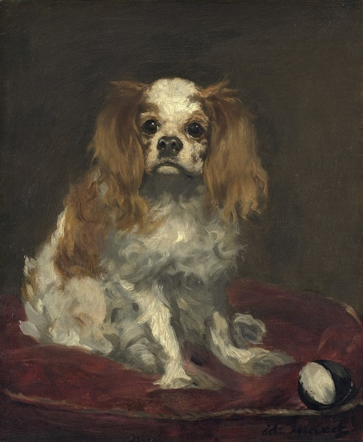 , 'A King Charles Spaniel ,' ca. 1866, Seattle Art Museum