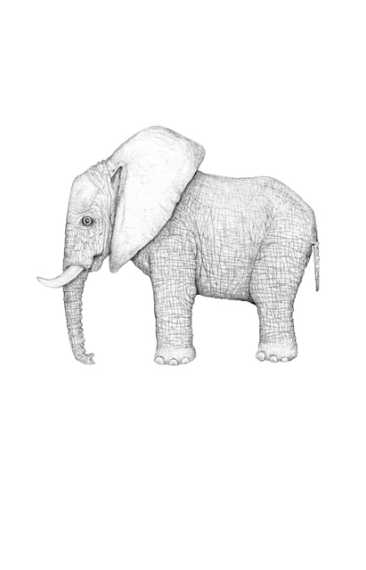 , 'My Tiny Elephant in the Room,' 2014, Rebecca Hossack Art Gallery