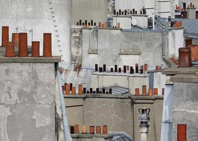 , 'Paris Rooftops 11,' 2014, Flowers