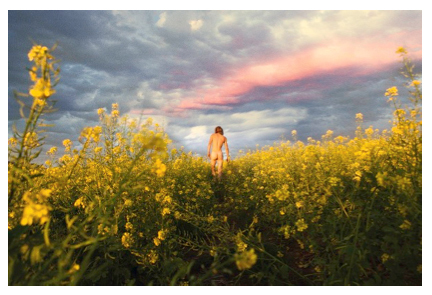 , 'Mustard Meadow,' 2013, Johyun Gallery