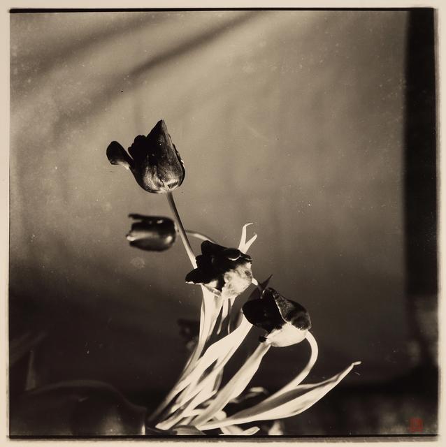 , 'Untitled,' 1930-1940, Three Shadows +3 gallery