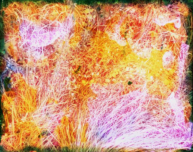 Tealia Ellis Ritter, 'Reenactment 101 (Lavender Grass)', 2014, Egg Collective