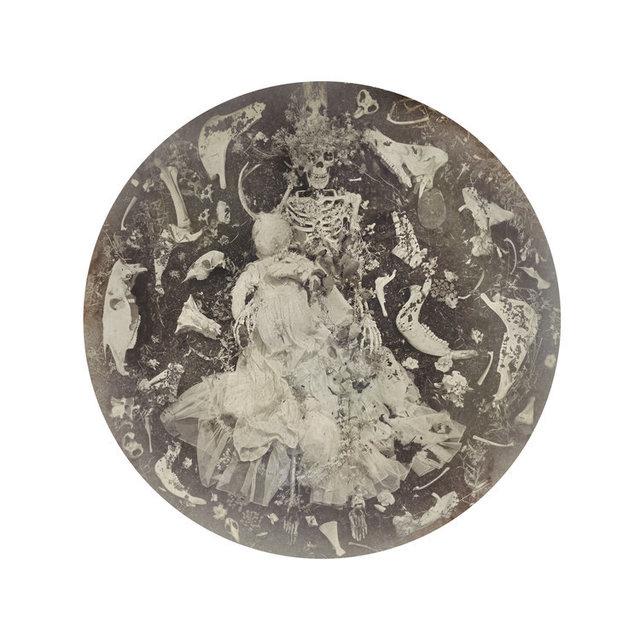 Kahn & Selesnick, 'Bone Augury', Yancey Richardson Gallery