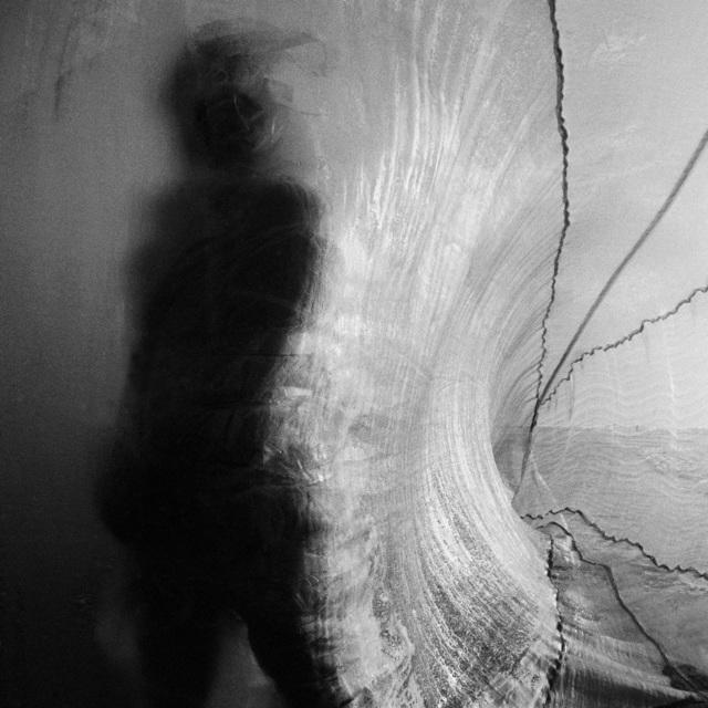 , 'Dead Woods A170,' 2013, Galerie Frédéric Moisan
