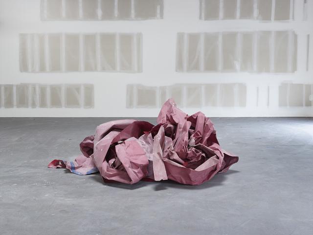 Catherine Wagner, 'Ephemeral Sculpture II', 2015, Anglim Gilbert Gallery