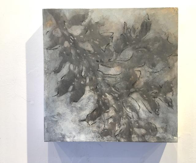 , 'Nebular Vines (9438),' 2017, Elisa Contemporary