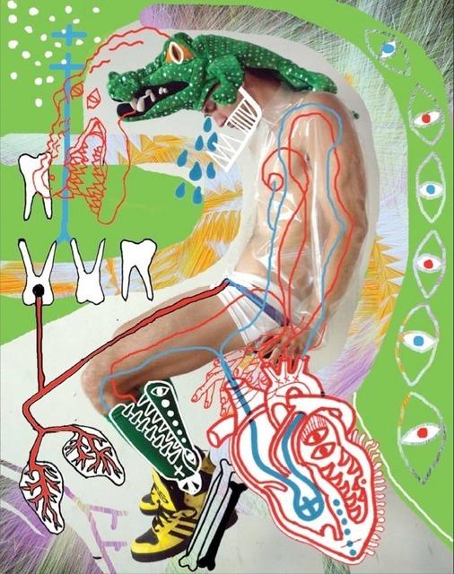 , 'Crocodile Heart (Carter);from the series Entropy Parade,' 2012, Galleri S.E
