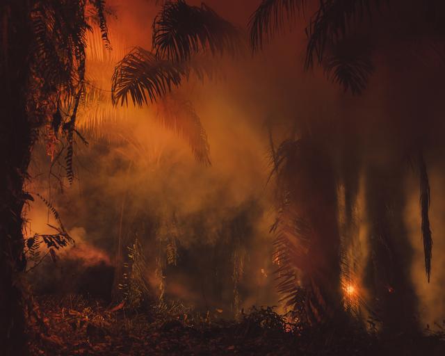 , 'An Invitation to Disappear - Tanah Grogot,' 2018, DITTRICH & SCHLECHTRIEM