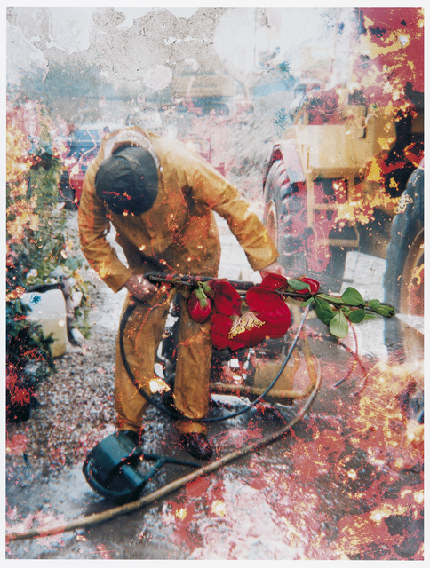 , 'Untitled, from the series 'Hackney Flowers' ,' 2005/2007, CHRISTOPHE GUYE GALERIE
