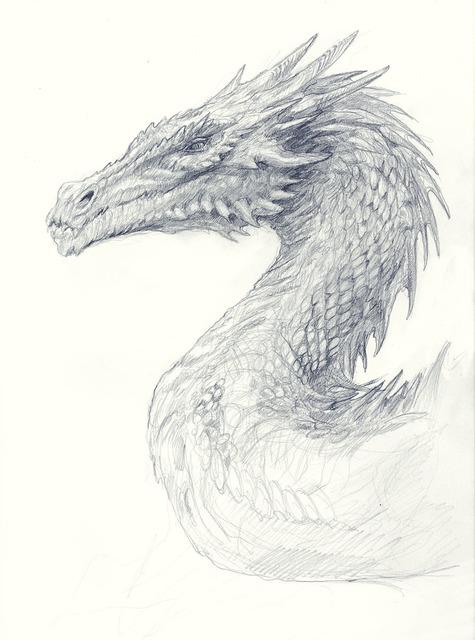 Matthew Stewart, 'Dragon Study', 2019, IX Gallery