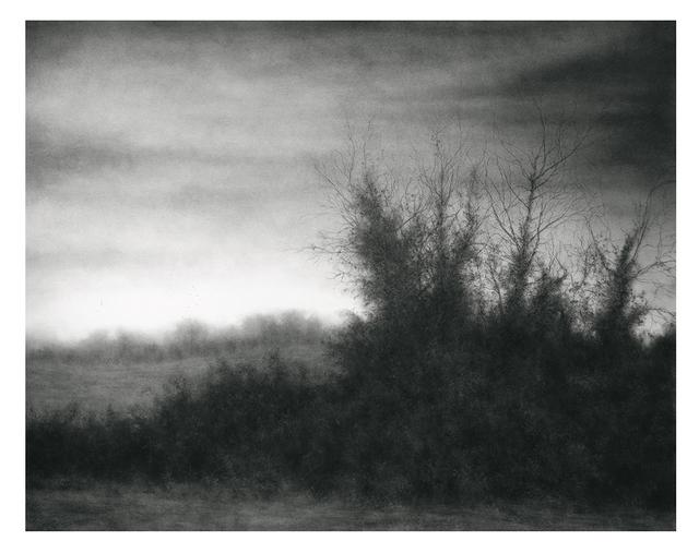Sue Bryan, 'Field's Edge', 2018, Carrie Haddad Gallery