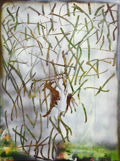 , 'Grafitti,' 2017, Galerie Reinhold Maas