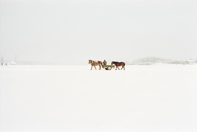 , 'Harbin,' 2012-2013, galerie SIT DOWN