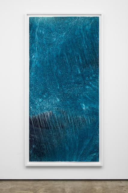 Meghann Riepenhoff, 'Ecotone #836 (Big Creek, WA 03.07.20, Snow and Freezing Rain, Forest Understory Throughfall', 2020, Photography, Dynamic cyanotype, Lora Reynolds Gallery