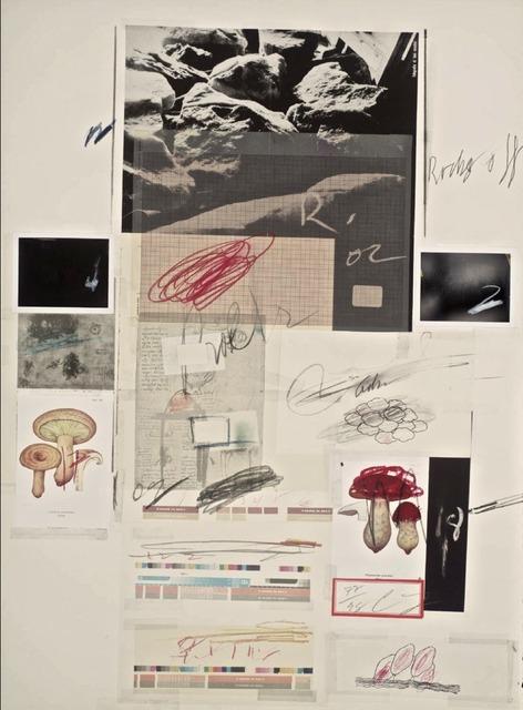, 'Natural History Part 1, No X,' 1974, Galerie Maximillian